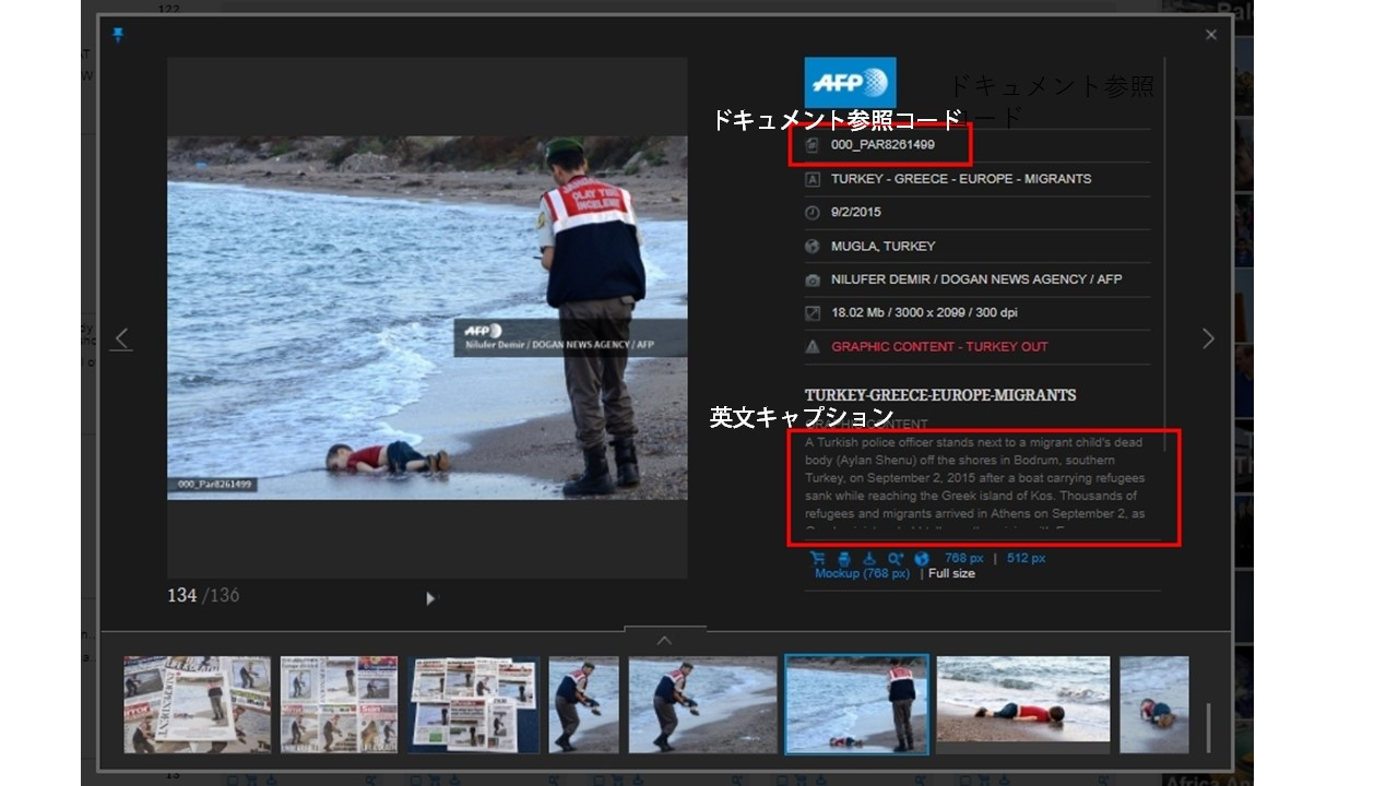 Afp Forum Images